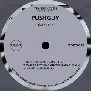 Pushguy - LIMPID EP