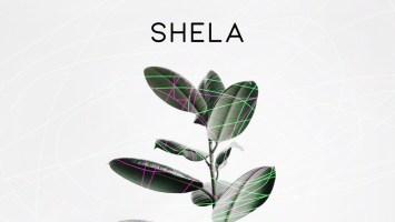 Slay (SA) - Shela (Original Mix)