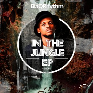 BlaQRhythm - In the Jungle EP