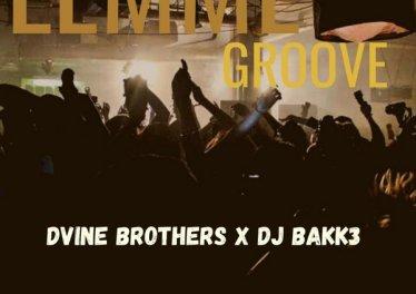 Dvine Brothers & Dj Bakk3 - Lemme Groove (Original Mix)