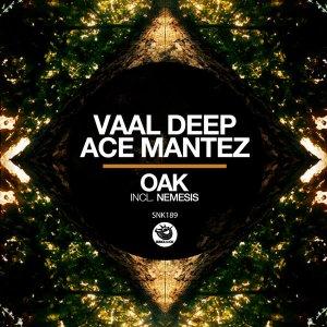 Vaal Deep & Ace Mantez - Oak (Original Mix)
