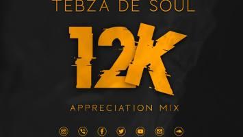 Tebza De SouL - 12k Appreciation Mix