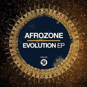 AfroZone - Evolution EP