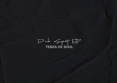 Tebza De SouL - Dub Spot EP