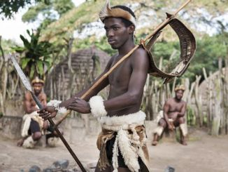 History of zulu kingdom under Shaka