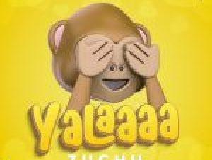 Download MP3: Zuchu – Yalaaaa