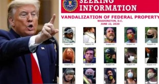 Donald Trump confirms many are in custody as he seeks help in identifying 15 other suspects for vandalization of Federal Property