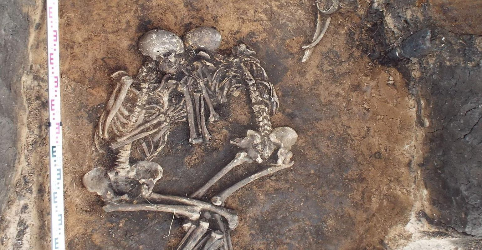 WHAT IS BUBONIC PLAGUE? : IT WIPED OUT A THIRD OF EUROPE ...