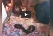 BLACKMAGIC : Video Of African Man Praising Juju Snake After It 'Vomits' Money Goes Viral