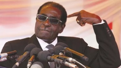Photo of Best 20 funny Robert Mugabe quotes on relationship and lifestyle