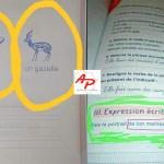 Côte d'Ivoire Graves erreurs dans les manuels scolaires le ministère nie sa responsabilité