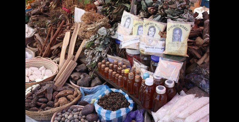 Coronavirus le Zimbabwe approuve un traitement à base de plantes (médecine traditionnelle)