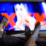 Des professionnels du porno préparent une « charte déontologique » du X