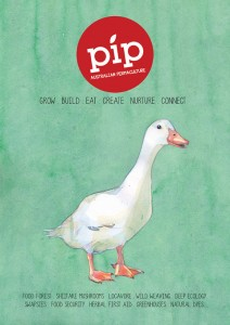 PIP-Cover-issue-1MR