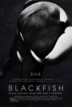 BlackfishPoster