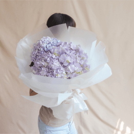 Three Stalk of Hydrangea bouquet wrapped with white wrapping paper