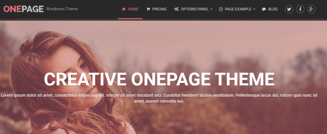 best one page wp theme