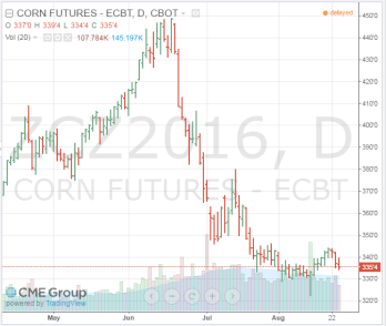 Figure 3. Price of December 2016 Corn Futures Contract (Access August 24, 2016). Source: CME Group