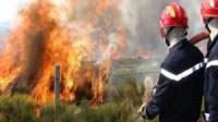 حريق يتسبب في إتلاف مساحات شاسعة من المغروسات باشتوكة