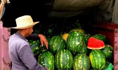 دلاح استعمل في زراعته براز بشري في طريقه إلى الأسواق