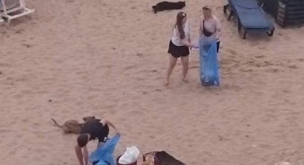 +صور: سياح أجانب ينوبون عن مسؤولي تغازوت ويقومون بحملة نظافة للشاطئ