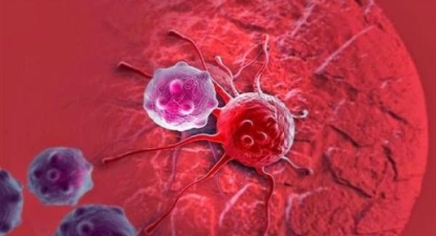"""وداعا السرطان… """"البذرة المعدنية"""" تدمر الأورام في 10 دقائق"""