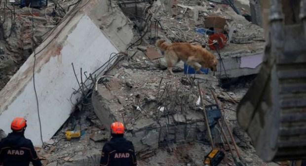 18 قتيلا في حادث انهيار مبنى يتألف من 8 طوابق سكنية في تركيا.