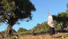 """""""شجرة الأركان"""" النادرة على يد المرأة القروية في جبال سوس."""