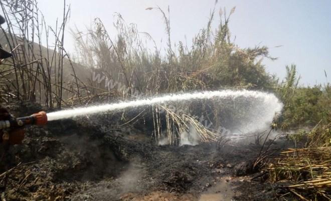 """اخماد حريق مهول كاد يعصف بـ""""شجر الموز"""" بتامري نواحي أكادير (+الصور)"""