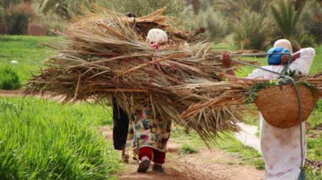 رصد 10 ملايين درهم لدعم النساء في وضعية صعبة بجهة سوس ماسة