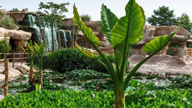 تقديم التصور النهائي لمشروعي حديقة النباتات ومتحف التراث الأمازيغي بأكادير