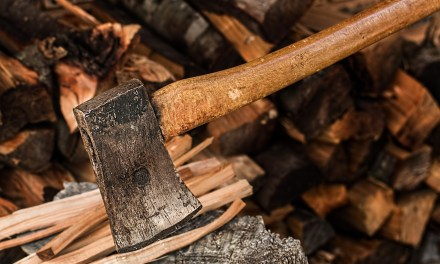 """ATG Quirkies: A """"Completely Gripping"""" book on Wood Chopping for Winter"""
