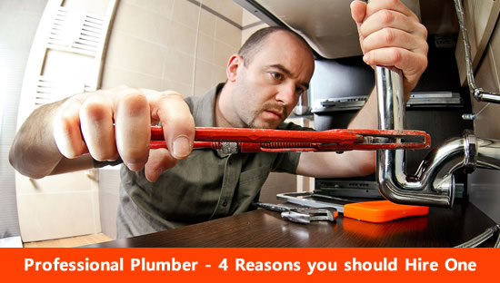 Professional Plumber 4 reasons you should hire one