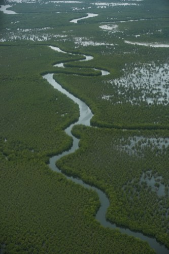 In the rainy season, the majority of Liberia becomes marshland