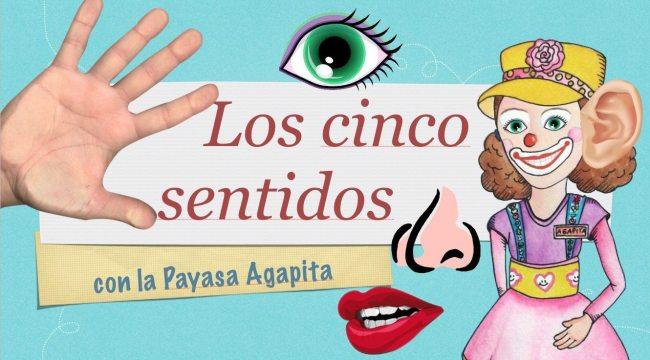 Video: Los cinco sentidos