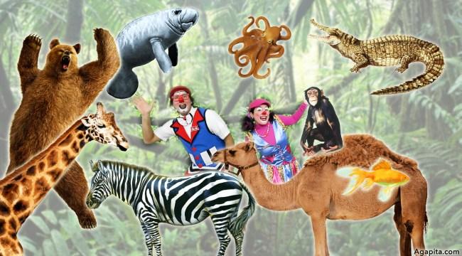 Hábitats: Animales Terrestres y Animales Acuáticos