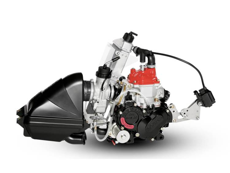motor karting rotax junior max evo lateral