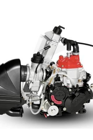 Motor para kart rotax junior max evo lateral