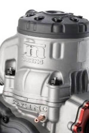 Cilindro y pistón Motor TM