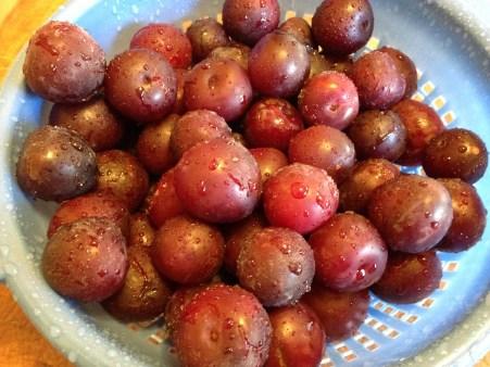 Methley plums