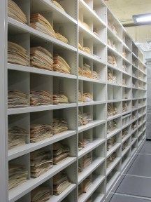 Herbaria collections