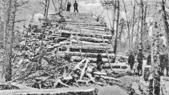 007-Logging-large
