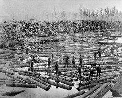 008-Logging-large