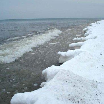 Shoreline-Dec-east-big
