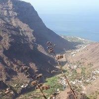 L'Archipel des Canaries en famille : île La Gomera