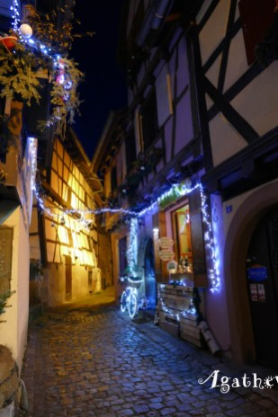 2019NF0217-Eguisheim-Ruelle décorée