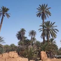 Maroc, tourisme, covid 19 : la situation actuelle