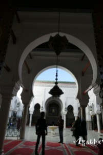2019FE0256-Fes-Medina-Mosquee cours