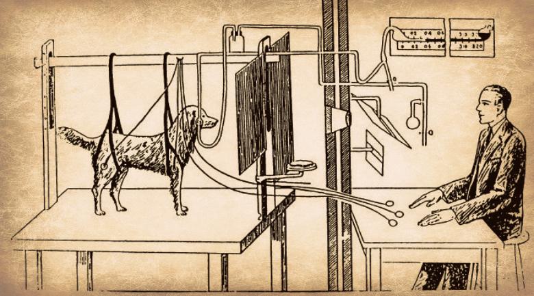 https://i1.wp.com/agbeat.com/wp-content/uploads/2012/06/pavlov-experiment.jpg
