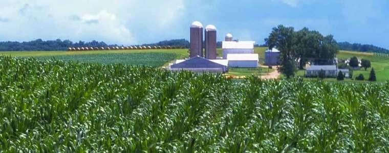 Pennsylvania corn field and farm